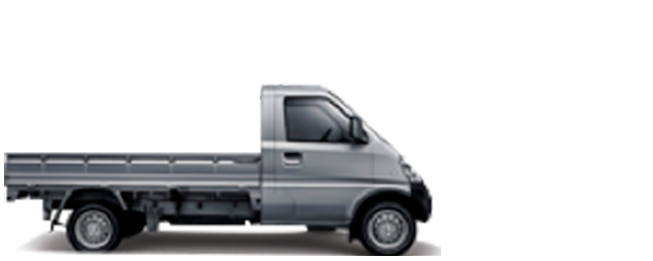 N300-pickup